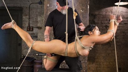 Photo number 1 from Brutal Hair Suspension, Grueling Bondage, Torment, and Orgasms!!! shot for Hogtied on Kink.com. Featuring Mia Little and The Pope in hardcore BDSM & Fetish porn.