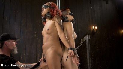 Photo number 2 from Two Sluts Suffer in Grueling Bondage with Squirting Orgasms shot for Device Bondage on Kink.com. Featuring Ingrid Mouth, Daisy Ducati and The Pope in hardcore BDSM & Fetish porn.