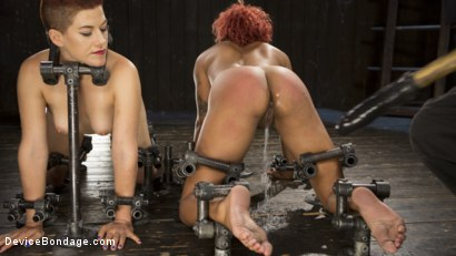 Photo number 5 from Two Sluts Suffer in Grueling Bondage with Squirting Orgasms shot for Device Bondage on Kink.com. Featuring Ingrid Mouth, Daisy Ducati and The Pope in hardcore BDSM & Fetish porn.