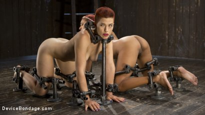 Photo number 8 from Two Sluts Suffer in Grueling Bondage with Squirting Orgasms shot for Device Bondage on Kink.com. Featuring Ingrid Mouth, Daisy Ducati and The Pope in hardcore BDSM & Fetish porn.