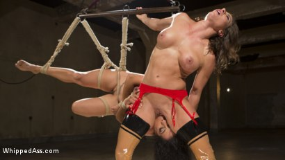 Photo number 1 from Loser's Smackdown 2: Tough Slut Training shot for Whipped Ass on Kink.com. Featuring Ariel X and Izamar Gutierrez in hardcore BDSM & Fetish porn.