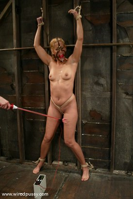 Photo number 14 from Isis Love shot for Wired Pussy on Kink.com. Featuring Isis Love in hardcore BDSM & Fetish porn.