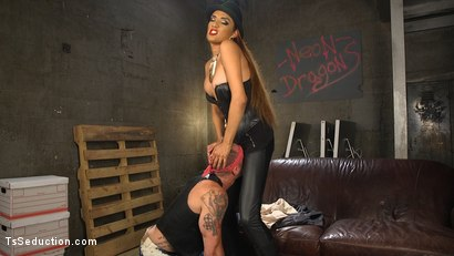 Photo number 1 from TS Boss Bitch shot for TS Seduction on Kink.com. Featuring Jessica Fox and D. Arclyte in hardcore BDSM & Fetish porn.