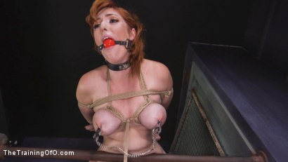 Photo number 10 from Slave Training Lauren Phillips: Your Whore, Your Cunt, Your Bitch shot for thetrainingofo on Kink.com. Featuring Owen Gray and Lauren Phillips in hardcore BDSM & Fetish porn.