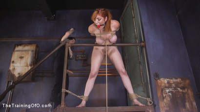 Photo number 9 from Slave Training Lauren Phillips: Your Whore, Your Cunt, Your Bitch shot for thetrainingofo on Kink.com. Featuring Owen Gray and Lauren Phillips in hardcore BDSM & Fetish porn.