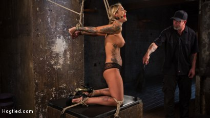 Photo number 1 from ALT Tattooed Pain Slut Submits in Grueling Bondage shot for Hogtied on Kink.com. Featuring Kleio Valentien in hardcore BDSM & Fetish porn.