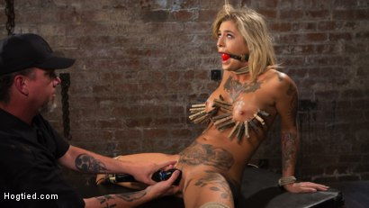 Photo number 14 from ALT Tattooed Pain Slut Submits in Grueling Bondage shot for Hogtied on Kink.com. Featuring Kleio Valentien in hardcore BDSM & Fetish porn.