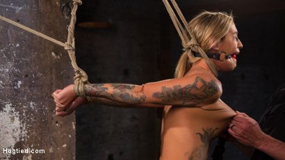 Photo number 4 from ALT Tattooed Pain Slut Submits in Grueling Bondage shot for Hogtied on Kink.com. Featuring Kleio Valentien in hardcore BDSM & Fetish porn.
