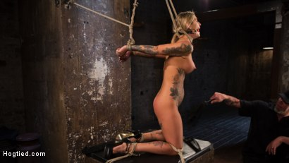 Photo number 5 from ALT Tattooed Pain Slut Submits in Grueling Bondage shot for Hogtied on Kink.com. Featuring Kleio Valentien in hardcore BDSM & Fetish porn.