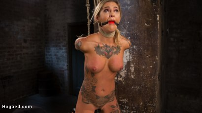 Photo number 6 from ALT Tattooed Pain Slut Submits in Grueling Bondage shot for Hogtied on Kink.com. Featuring Kleio Valentien in hardcore BDSM & Fetish porn.