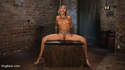Photo number 7 from ALT Tattooed Pain Slut Submits in Grueling Bondage shot for Hogtied on Kink.com. Featuring Kleio Valentien in hardcore BDSM & Fetish porn.