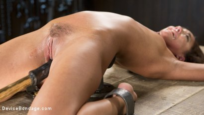 Photo number 12 from Fresh Meat - Amara Romani is Dominated in Inescapable Bondage  shot for Device Bondage on Kink.com. Featuring Amara Romani and The Pope in hardcore BDSM & Fetish porn.