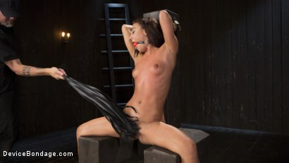 Photo number 6 from Fresh Meat - Amara Romani is Dominated in Inescapable Bondage  shot for Device Bondage on Kink.com. Featuring Amara Romani and The Pope in hardcore BDSM & Fetish porn.