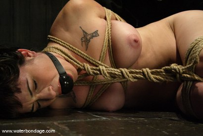Photo number 4 from Stacey Stax shot for Water Bondage on Kink.com. Featuring Stacey Stax in hardcore BDSM & Fetish porn.