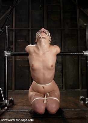 Photo number 11 from Amber Rayne shot for Water Bondage on Kink.com. Featuring Amber Rayne in hardcore BDSM & Fetish porn.
