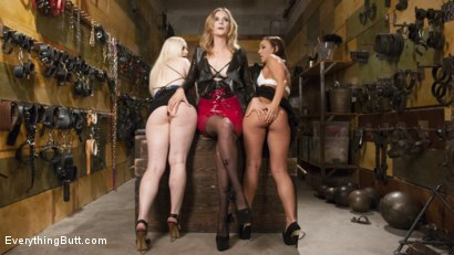 Photo number 2 from Shop lifters looking for a 5 finger discount get a 5 finger fist  shot for Everything Butt on Kink.com. Featuring Amara Romani, Mona Wales and Dresden in hardcore BDSM & Fetish porn.