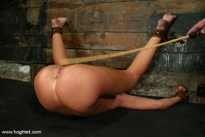 Photo number 13 from Holly Wellin shot for Hogtied on Kink.com. Featuring Holly Wellin in hardcore BDSM & Fetish porn.