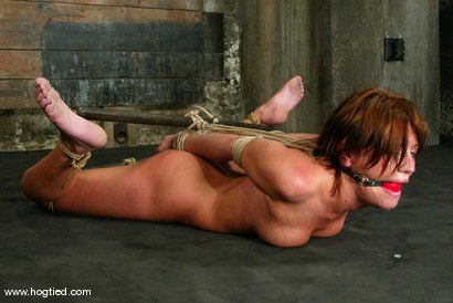 Photo number 6 from Holly Wellin shot for Hogtied on Kink.com. Featuring Holly Wellin in hardcore BDSM & Fetish porn.