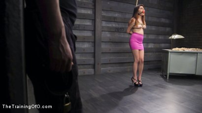 Photo number 1 from Disciplined For Dick: Slave Training Raquel Roper! shot for The Training Of O on Kink.com. Featuring Seth Gamble and Raquel Roper in hardcore BDSM & Fetish porn.