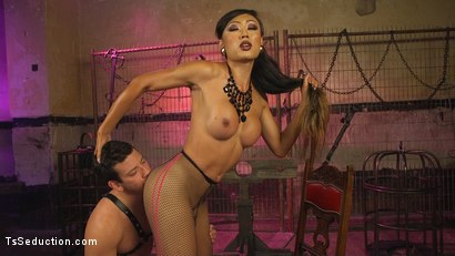 Photo number 17 from Goddess Venus Punishes Arrogant Boy Toy shot for TS Seduction on Kink.com. Featuring Reed Jameson and Venus Lux in hardcore BDSM & Fetish porn.