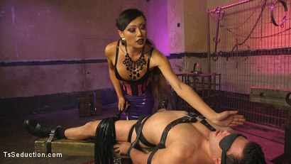 Photo number 18 from Goddess Venus Punishes Arrogant Boy Toy shot for TS Seduction on Kink.com. Featuring Reed Jameson and Venus Lux in hardcore BDSM & Fetish porn.