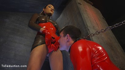 Photo number 16 from Latex Clad Domme Torments Hard Cocked Slaveboy shot for TS Seduction on Kink.com. Featuring Artemis Faux and Jessica Fox in hardcore BDSM & Fetish porn.