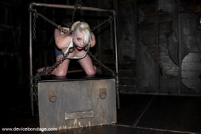 Photo number 3 from Chained and Caned shot for Device Bondage on Kink.com. Featuring Lorelei Lee in hardcore BDSM & Fetish porn.
