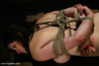 Photo number 10 from Stacey Stax shot for Hogtied on Kink.com. Featuring Stacey Stax in hardcore BDSM & Fetish porn.