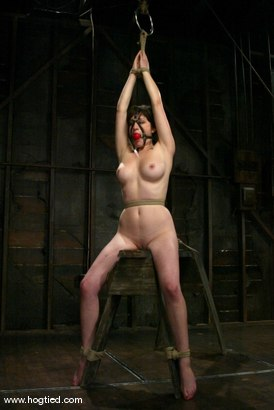 Photo number 7 from Stacey Stax shot for Hogtied on Kink.com. Featuring Stacey Stax in hardcore BDSM & Fetish porn.