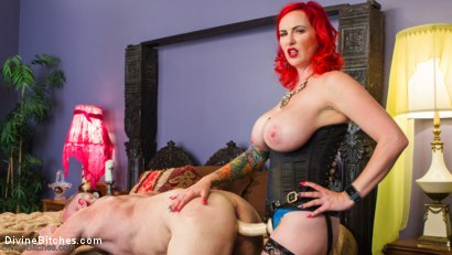 Photo number 12 from Hookers Revenge: Pegging, Humiliation and Enslavement shot for Divine Bitches on Kink.com. Featuring Mz Berlin and D. Arclyte in hardcore BDSM & Fetish porn.