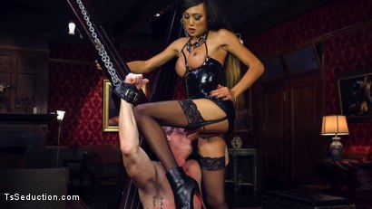 Photo number 4 from Huge Fat Load Of TS Cum For A Politician shot for TS Seduction on Kink.com. Featuring D. Arclyte and Venus Lux in hardcore BDSM & Fetish porn.