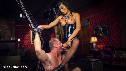 Photo number 12 from Huge Fat Load Of TS Cum For A Politician shot for TS Seduction on Kink.com. Featuring D. Arclyte and Venus Lux in hardcore BDSM & Fetish porn.