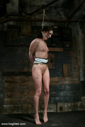 Photo number 3 from Maya Matthews shot for Hogtied on Kink.com. Featuring Maya Matthews in hardcore BDSM & Fetish porn.