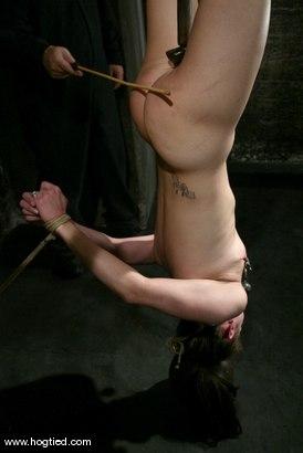 Photo number 6 from Maya Matthews shot for Hogtied on Kink.com. Featuring Maya Matthews in hardcore BDSM & Fetish porn.