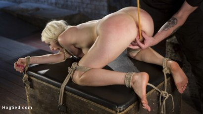 Photo number 5 from Lorelei Lee Submits to Extreme Bondage and Grueling Torment shot for Hogtied on Kink.com. Featuring Lorelei Lee and The Pope in hardcore BDSM & Fetish porn.