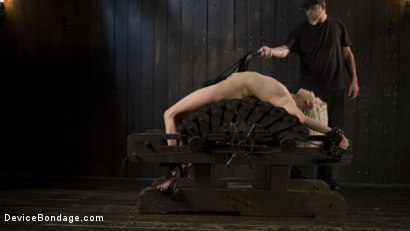 Photo number 8 from The New Bitch shot for Device Bondage on Kink.com. Featuring Cadence Lux and The Pope in hardcore BDSM & Fetish porn.