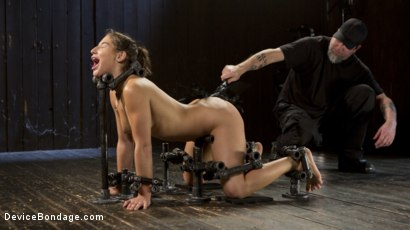 Photo number 14 from More Danger shot for Device Bondage on Kink.com. Featuring Abella Danger and The Pope in hardcore BDSM & Fetish porn.