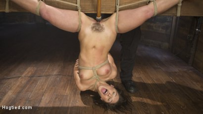 Photo number 7 from Abella Danger Submits in her Most Brutal Shoot to Date shot for Hogtied on Kink.com. Featuring Abella Danger and The Pope in hardcore BDSM & Fetish porn.