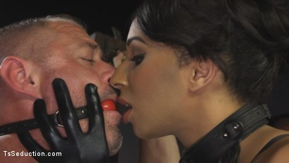 Photo number 1 from First Time Cream Pie  shot for TS Seduction on Kink.com. Featuring Honey FoXXX and D. Arclyte in hardcore BDSM & Fetish porn.