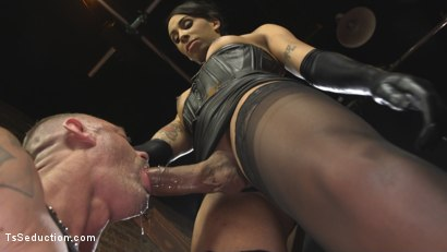 Photo number 5 from First Time Cream Pie  shot for TS Seduction on Kink.com. Featuring Honey FoXXX and D. Arclyte in hardcore BDSM & Fetish porn.