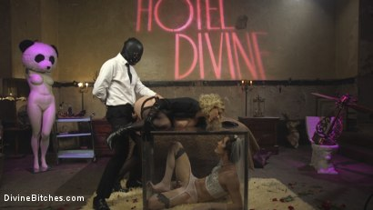 Photo number 15 from Honeymoon Cuckold At Hotel Divine shot for Divine Bitches on Kink.com. Featuring Maitresse Madeline Marlowe , Will Havoc and Tony Orlando in hardcore BDSM & Fetish porn.