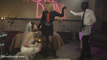 Photo number 1 from Honeymoon Cuckold At Hotel Divine shot for Divine Bitches on Kink.com. Featuring Maitresse Madeline Marlowe , Will Havoc and Tony Orlando in hardcore BDSM & Fetish porn.