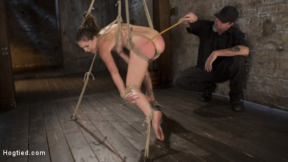 Photo number 1 from Pain Pixie Suffers in Grueling Bondage, is Tormented, and then Made to Cum shot for Hogtied on Kink.com. Featuring Juliette March and The Pope in hardcore BDSM & Fetish porn.