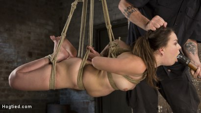 Photo number 3 from Pain Pixie Suffers in Grueling Bondage, is Tormented, and then Made to Cum shot for Hogtied on Kink.com. Featuring Juliette March and The Pope in hardcore BDSM & Fetish porn.