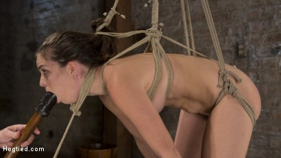 Photo number 9 from Pain Pixie Suffers in Grueling Bondage, is Tormented, and then Made to Cum shot for Hogtied on Kink.com. Featuring Juliette March and The Pope in hardcore BDSM & Fetish porn.