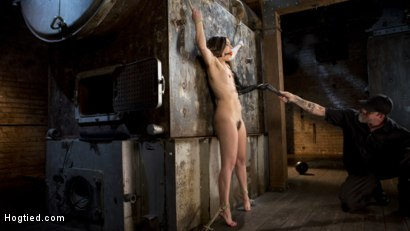 Photo number 10 from Pain Pixie Suffers in Grueling Bondage, is Tormented, and then Made to Cum shot for Hogtied on Kink.com. Featuring Juliette March and The Pope in hardcore BDSM & Fetish porn.
