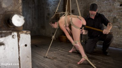 Photo number 16 from Pain Pixie Suffers in Grueling Bondage, is Tormented, and then Made to Cum shot for Hogtied on Kink.com. Featuring Juliette March and The Pope in hardcore BDSM & Fetish porn.