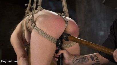 Photo number 8 from Pain Pixie Suffers in Grueling Bondage, is Tormented, and then Made to Cum shot for Hogtied on Kink.com. Featuring Juliette March and The Pope in hardcore BDSM & Fetish porn.