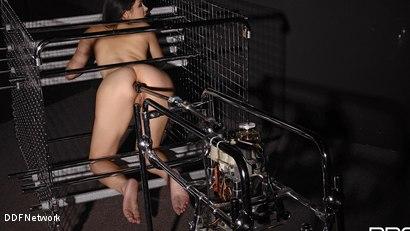 Photo number 12 from Futuristic Vision Of Restraint!: Valentina Nappi shot for DDF Network on Kink.com. Featuring Valentina Nappi in hardcore BDSM & Fetish porn.