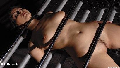 Photo number 9 from Futuristic Vision Of Restraint!: Valentina Nappi shot for DDF Network on Kink.com. Featuring Valentina Nappi in hardcore BDSM & Fetish porn.